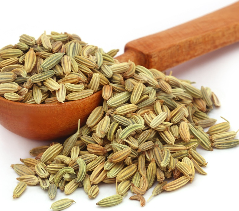 Fennel Essential Oil Supplier and Manufacturer