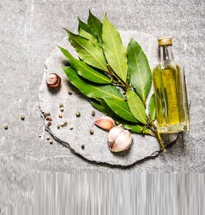 CO2 Extraction Bay Leaf Oil Manufacturer, Supplier in India