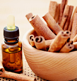 Cinnamon Essential Oil Supplier from India