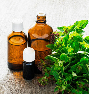 Exporter of Oregano Pepper Essential Oil from India