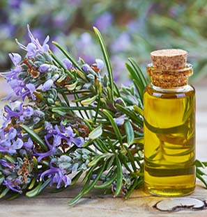 Rosemary Oil Exporter India