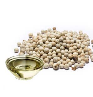 Exporter of White Pepper Essential Oil from India
